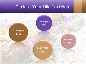 0000072575 PowerPoint Templates - Slide 77