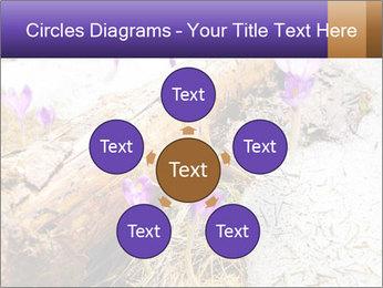 0000072575 PowerPoint Template - Slide 78