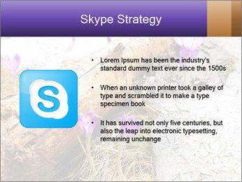 0000072575 PowerPoint Templates - Slide 8