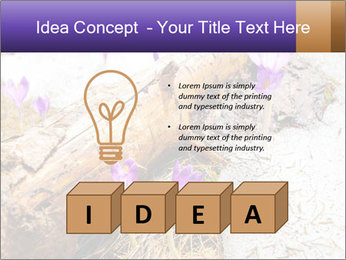 0000072575 PowerPoint Templates - Slide 80