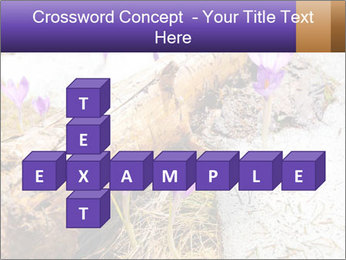 0000072575 PowerPoint Templates - Slide 82