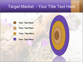 0000072575 PowerPoint Templates - Slide 84