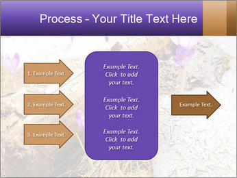 0000072575 PowerPoint Templates - Slide 85