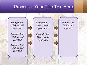 0000072575 PowerPoint Template - Slide 86
