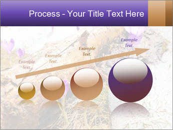 0000072575 PowerPoint Templates - Slide 87