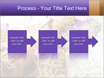0000072575 PowerPoint Template - Slide 88