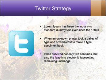 0000072575 PowerPoint Template - Slide 9