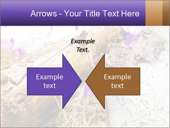 0000072575 PowerPoint Template - Slide 90
