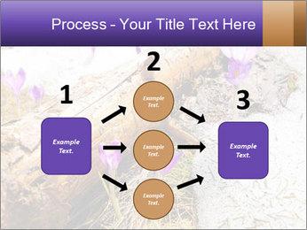 0000072575 PowerPoint Templates - Slide 92