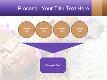 0000072575 PowerPoint Template - Slide 93