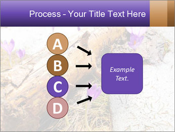 0000072575 PowerPoint Template - Slide 94