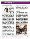 0000072578 Word Template - Page 3
