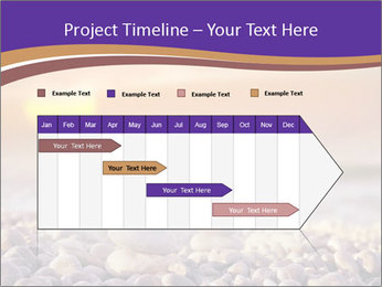 0000072585 PowerPoint Template - Slide 25