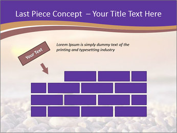 0000072585 PowerPoint Template - Slide 46