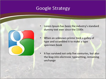 0000072591 PowerPoint Template - Slide 10
