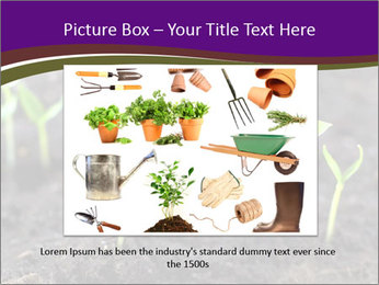 0000072591 PowerPoint Template - Slide 16