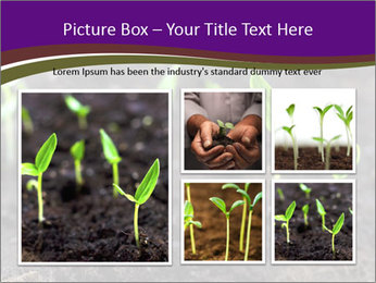0000072591 PowerPoint Template - Slide 19