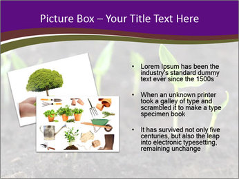 0000072591 PowerPoint Template - Slide 20
