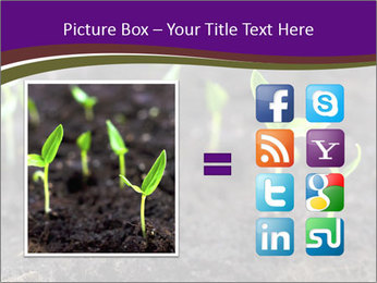 0000072591 PowerPoint Template - Slide 21