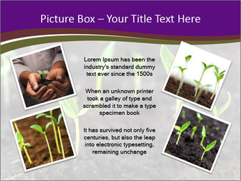 0000072591 PowerPoint Template - Slide 24