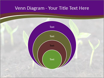 0000072591 PowerPoint Template - Slide 34