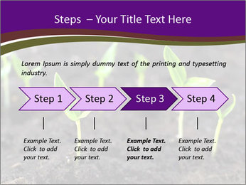 0000072591 PowerPoint Template - Slide 4