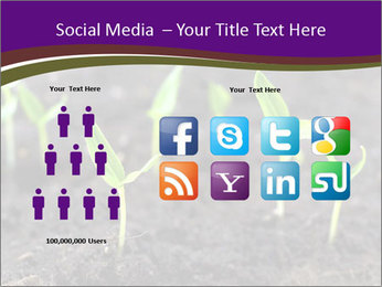 0000072591 PowerPoint Template - Slide 5