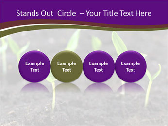 0000072591 PowerPoint Template - Slide 76