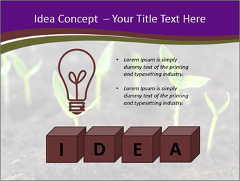0000072591 PowerPoint Template - Slide 80