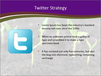 0000072591 PowerPoint Template - Slide 9
