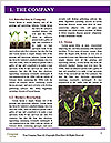 0000072591 Word Template - Page 3