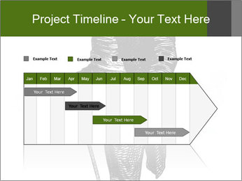 0000072597 PowerPoint Template - Slide 25