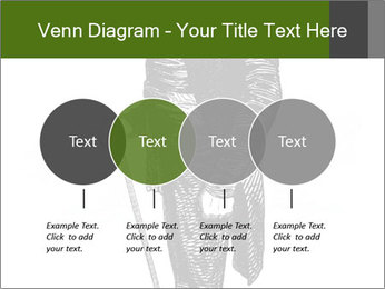 0000072597 PowerPoint Template - Slide 32