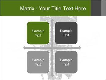 0000072597 PowerPoint Template - Slide 37