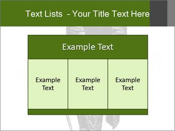 0000072597 PowerPoint Template - Slide 59
