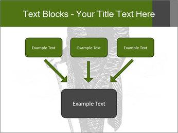 0000072597 PowerPoint Template - Slide 70