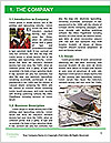 0000072598 Word Template - Page 3