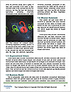 0000072600 Word Templates - Page 4