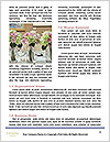 0000072604 Word Template - Page 4