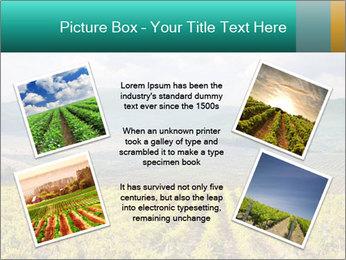 0000072605 PowerPoint Templates - Slide 24