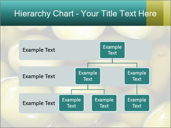 0000072607 PowerPoint Template - Slide 67