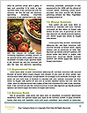 0000072607 Word Templates - Page 4