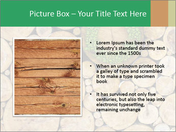 0000072611 PowerPoint Template - Slide 13