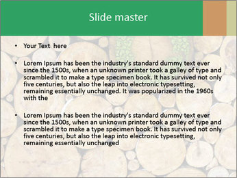 0000072611 PowerPoint Templates - Slide 2