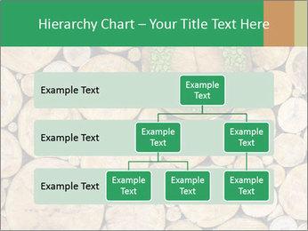 0000072611 PowerPoint Templates - Slide 67