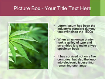0000072612 PowerPoint Template - Slide 13