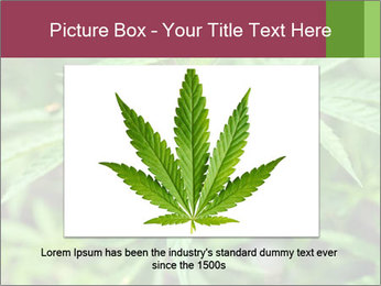 0000072612 PowerPoint Template - Slide 15