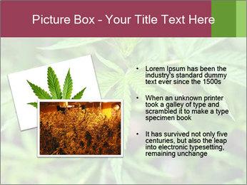 0000072612 PowerPoint Template - Slide 20