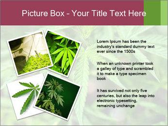 0000072612 PowerPoint Template - Slide 23