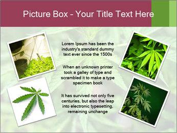 0000072612 PowerPoint Template - Slide 24